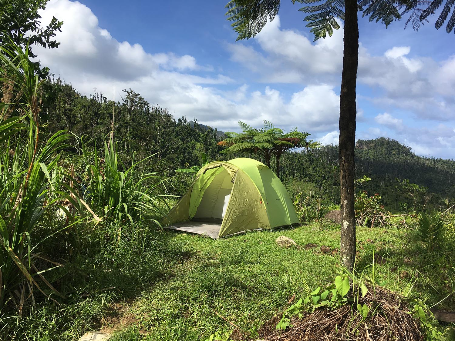 Hammock tent rental for camping guests and WorkAway in Dominica.
