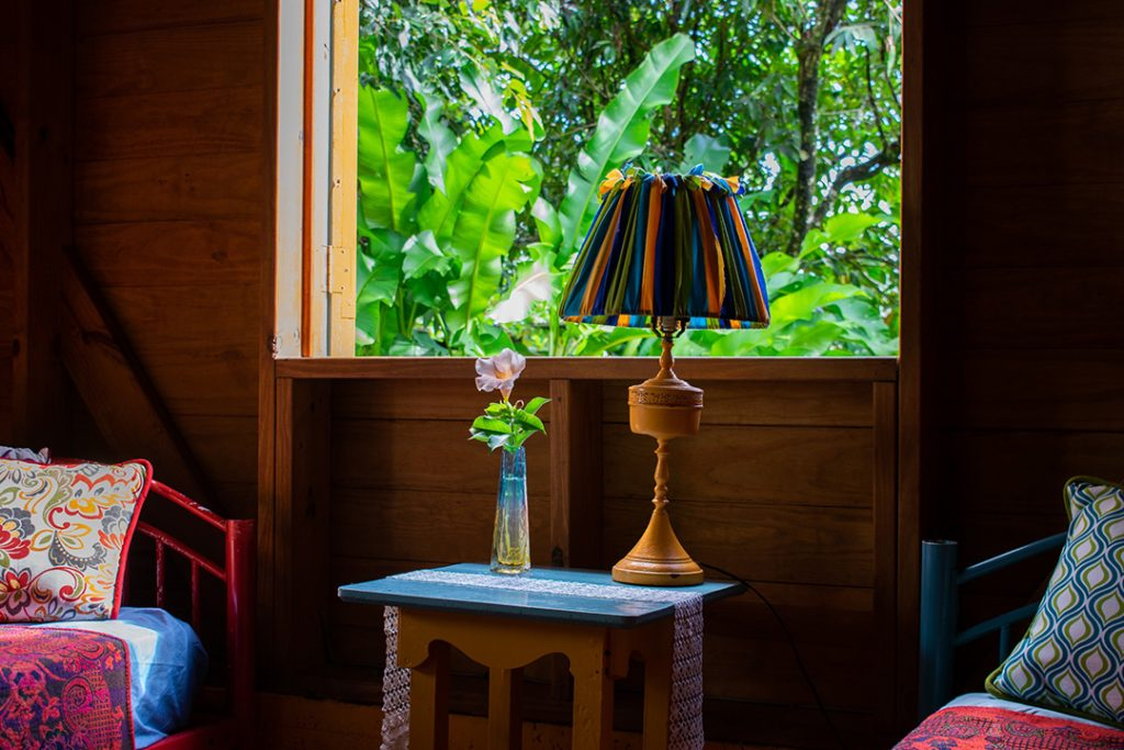 Hotel room with lamp, vase, and rainforrest.
